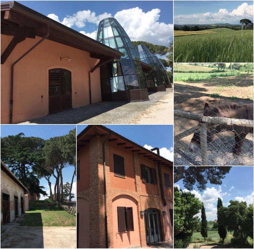 Casali del Pino, scorci