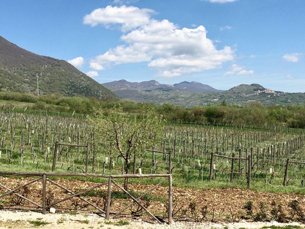 Reale, la campagna intorno Casadonna