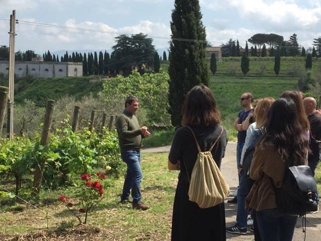Festa del vino ospitale - Villa Simone