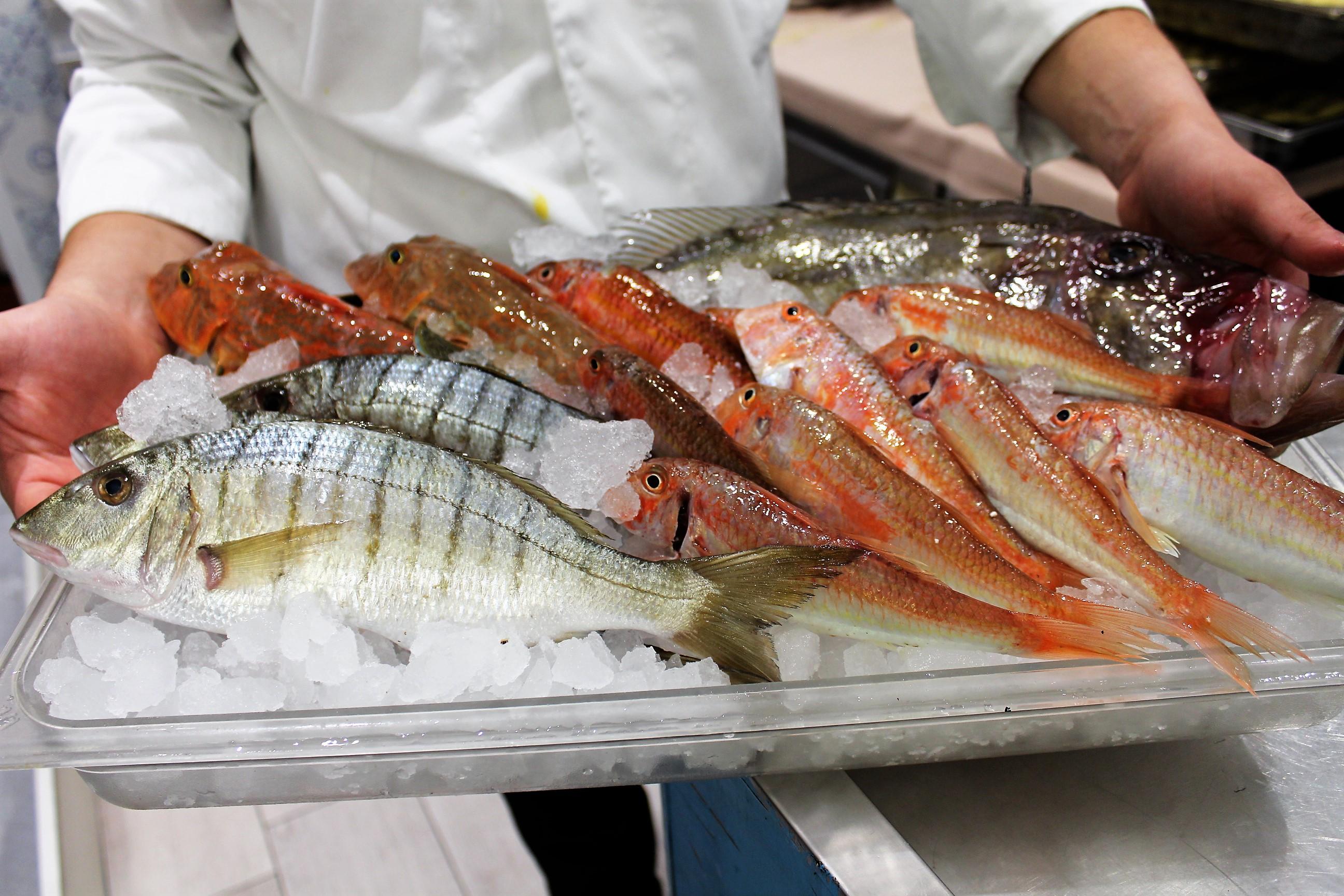 Da.Ni'. Formia – la selezione del pescato di Danilo Prota