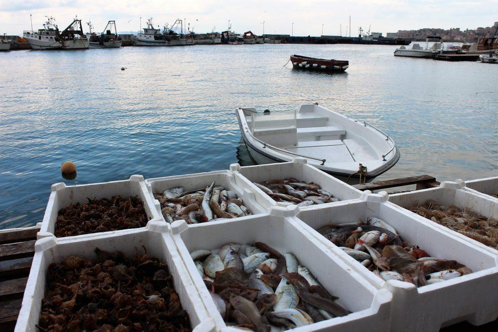 Da.Ni'. Formia – il pescato locale in arrivo