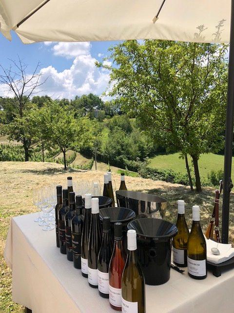 Cantina Le Macchie produce 9 tipologie di vino tra vitigni internazionali e autoctoni