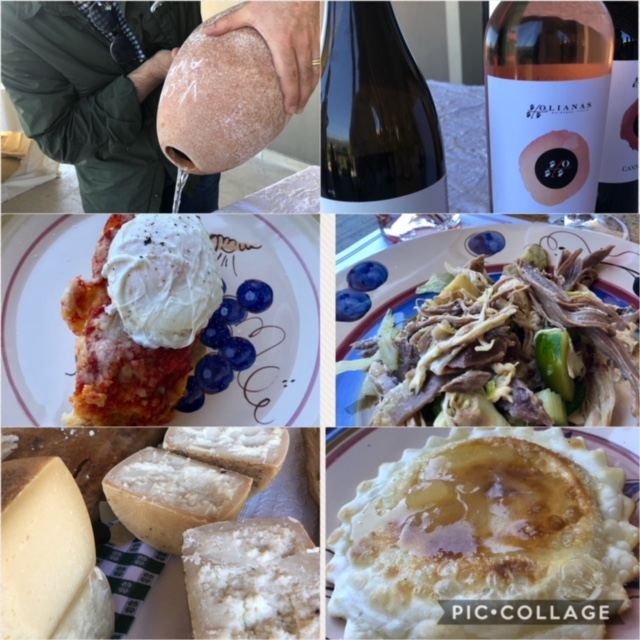 Piatti della tradizione sarda, formaggi di Zanda, seadas con i vini di Olianas