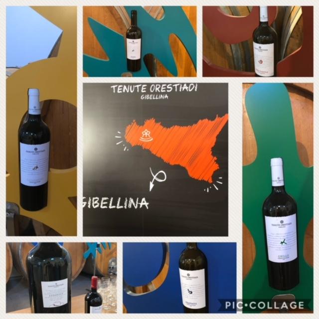 I vini di Tenute Orestiadi