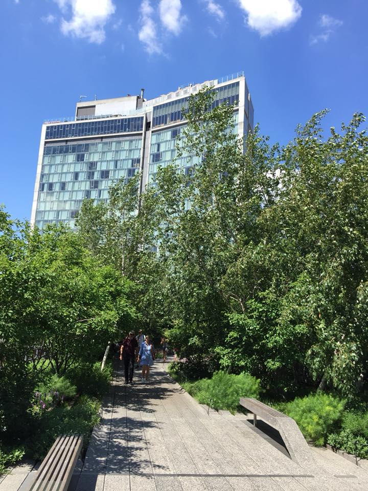 La passeggiata sull'High Line