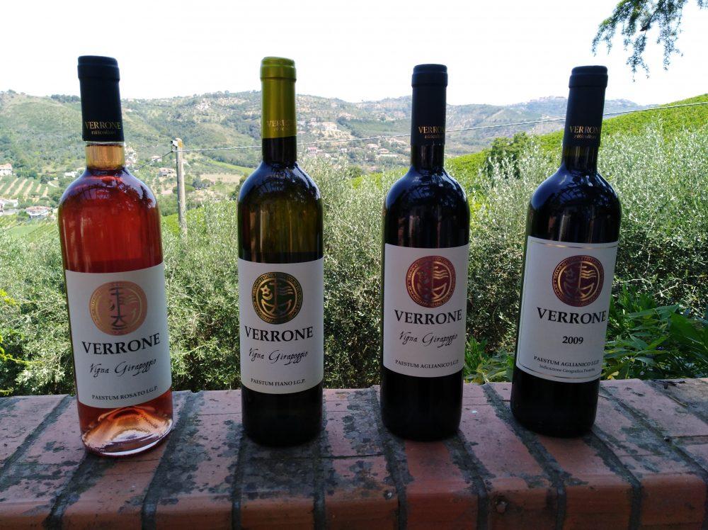 Vini azienda Verrone