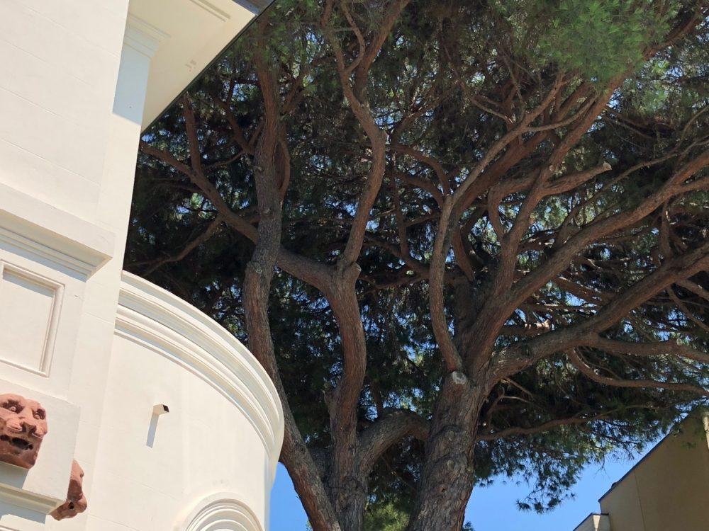 Hotel De La Ville, Riccione, luce ed ombra