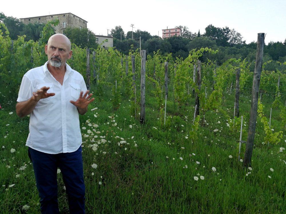 Mario Donnabella