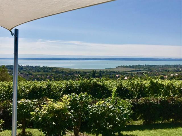 I vini Ungheresi del Lago Balaton