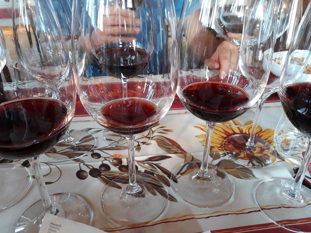 Il Poderino - I vini in degustazione