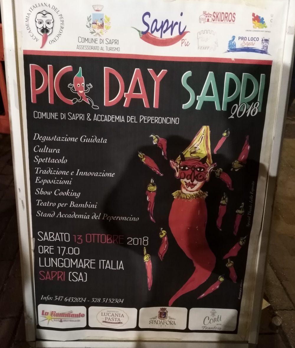 Locandina di Pic Day 2018 a Sapri