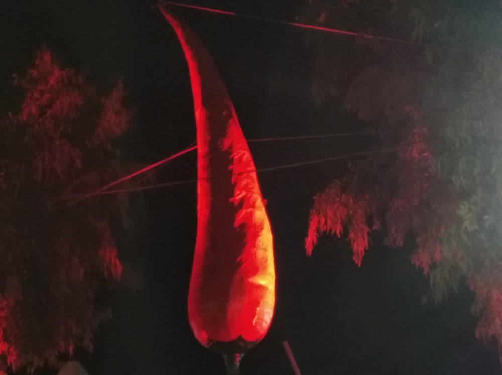 Pic Day 2018 Emblema del peperoncino