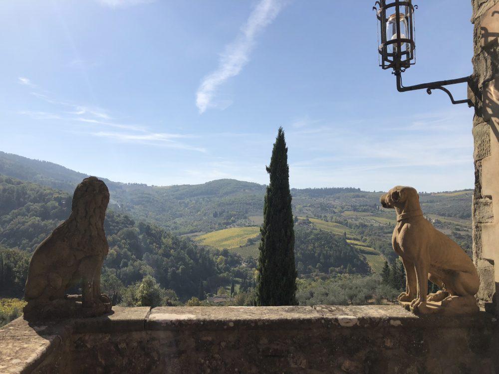 Vignamaggio -la vista dalla terrazza