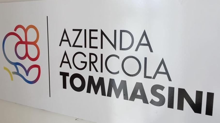 Azienda Agricola Tommasini