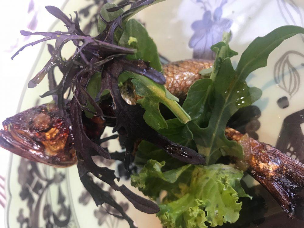 Lido 84 - sarda di lago affumicata e fritta, miele elicrisium, agrumi