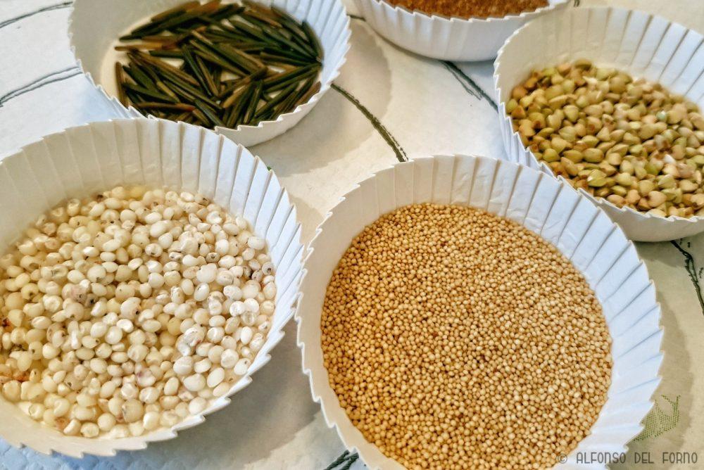 Cereali naturalmente privi glutine