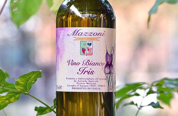 Mazzoni Salotti Prezzi.Vinerdi Il Vino Della Settimana Iris Bianco Tiziano