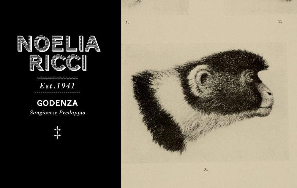 Noelia Ricci - Godenza