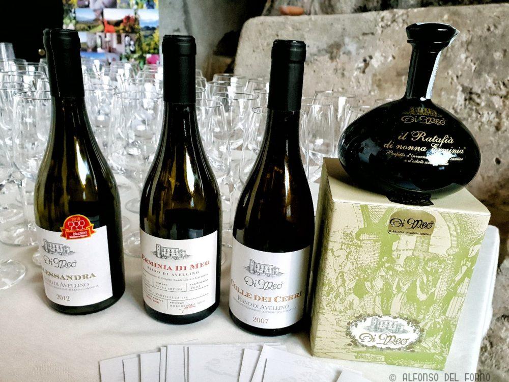 I vini dell'Azienda Agricola Di Meo