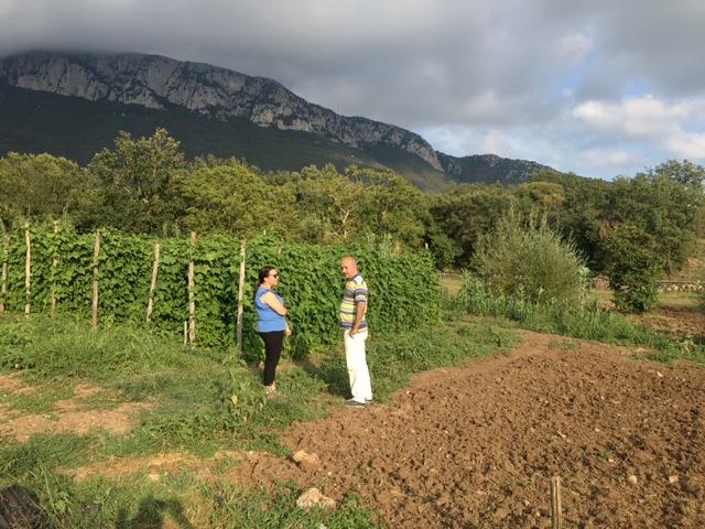 Azienda agricola Ferrante - campo fagioli