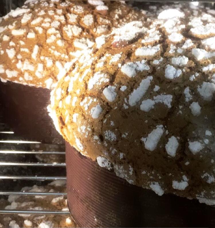 Pasticceria Cutolo - panettoni nel forno