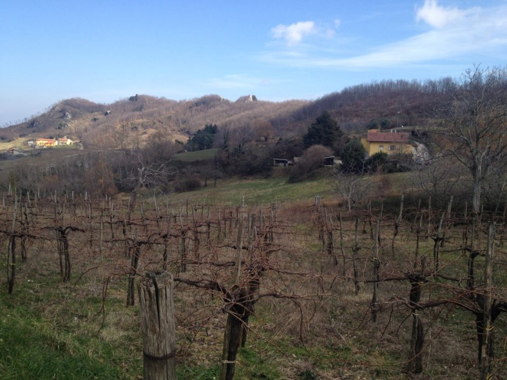 Agriturismo Serra del Taburno - panorama