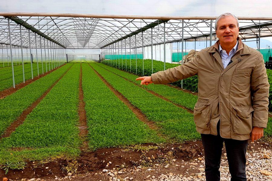 Vito Busillo della Coldiretto