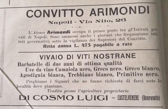 La pubblicità del vivaio Di Cosmo - Anno 1913