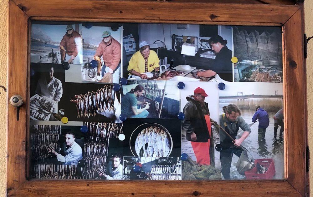 Da Ceko il pescatore, le catture di un mestiere che cattura
