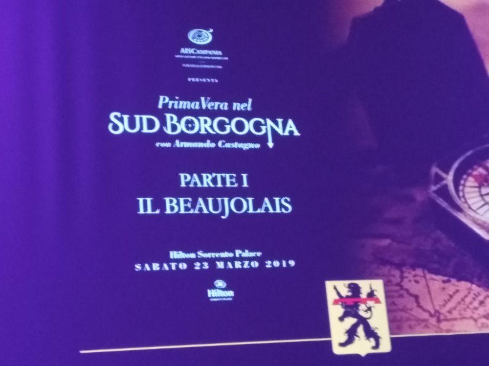 PrimaVera nel Sud Borgogna Parte I Beaujolais