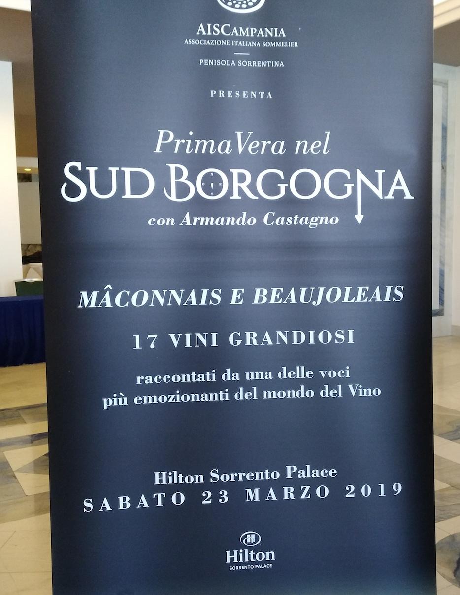 PrimaVera nel Sud Borgogna Progamma