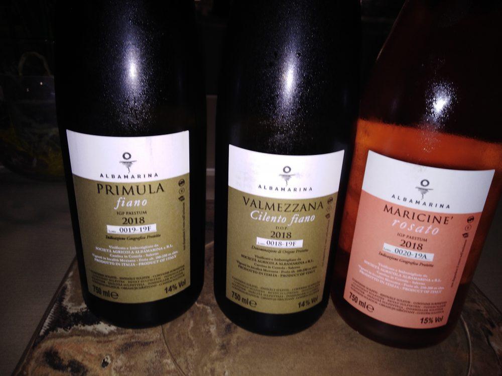 Controetichette Vini Albamarina