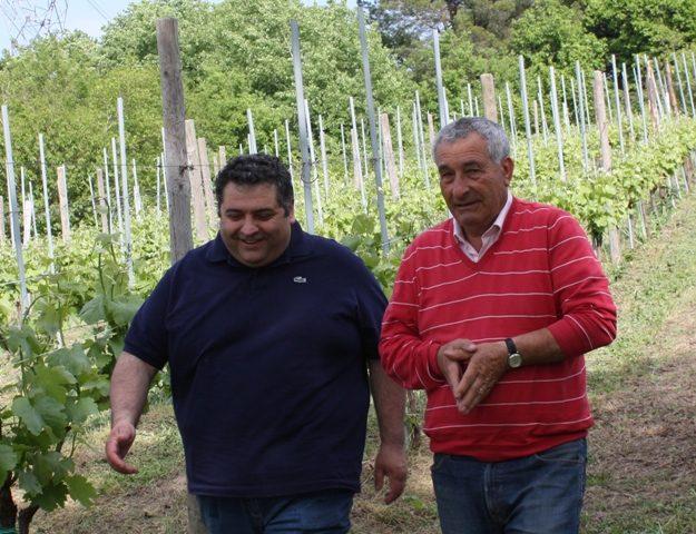 Tra le vigne con Angelo Pizzi