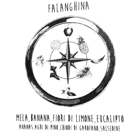 La bussola olfattiva dei vini Falanghina (Luigi Moio - Il respiro del vino)