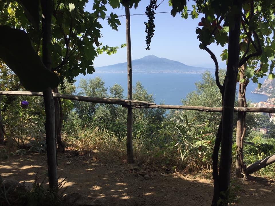 Villa Rosa di Nonna Rosa, il Vesuvio dai tavoli