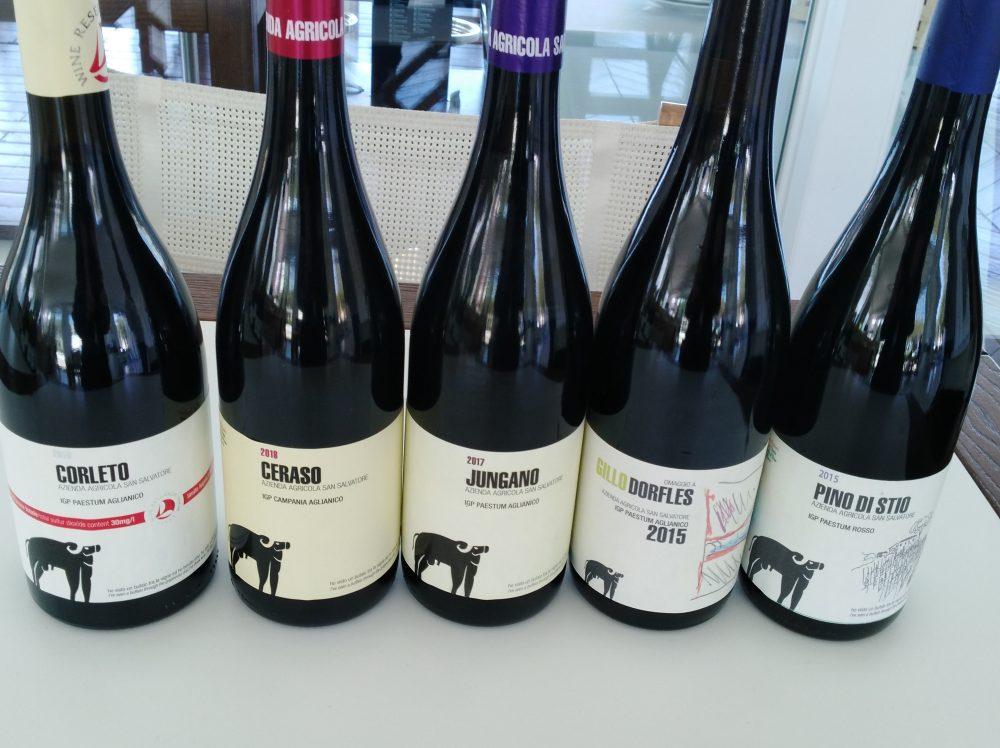 Altri vini di San Salvatore nuove annate