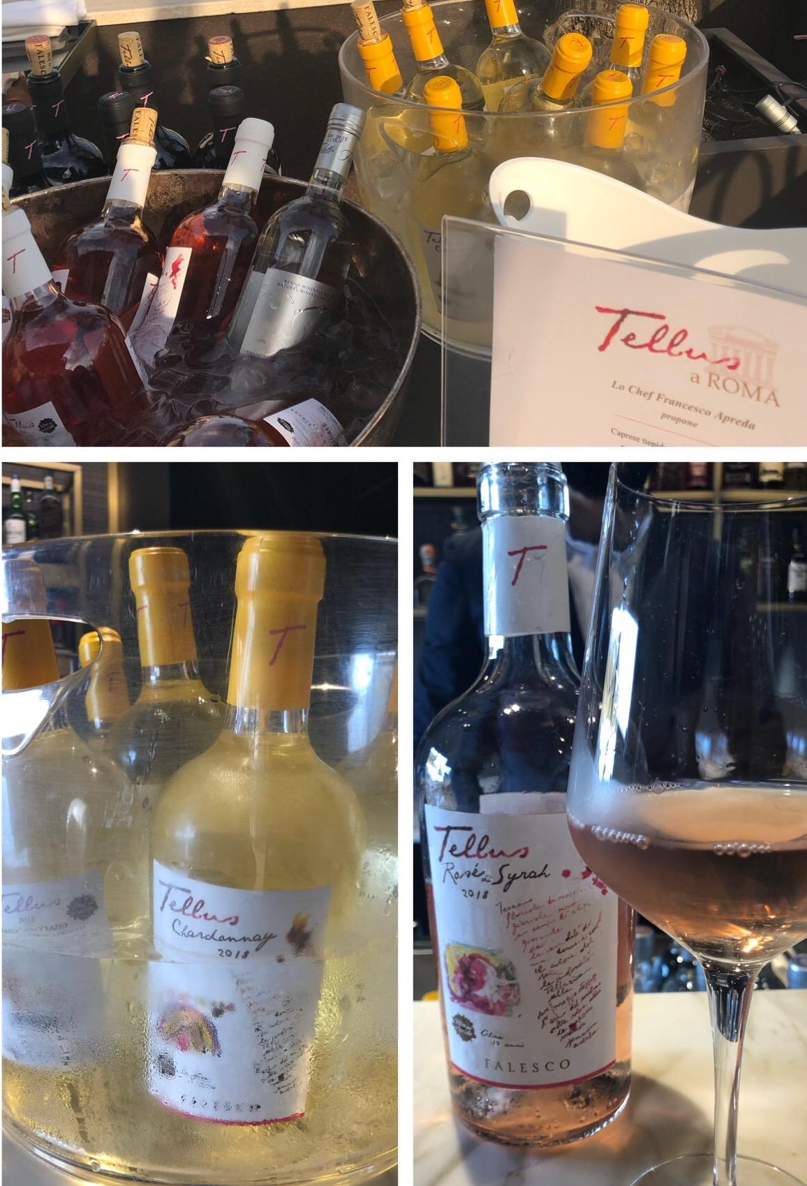 Il vino Tellus Falesco