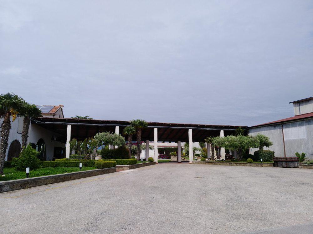 Azienda Villa Matilde Avallone