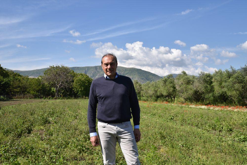 Giovanni Trinchese, Presidente Cooperativa eccellenze Nolane