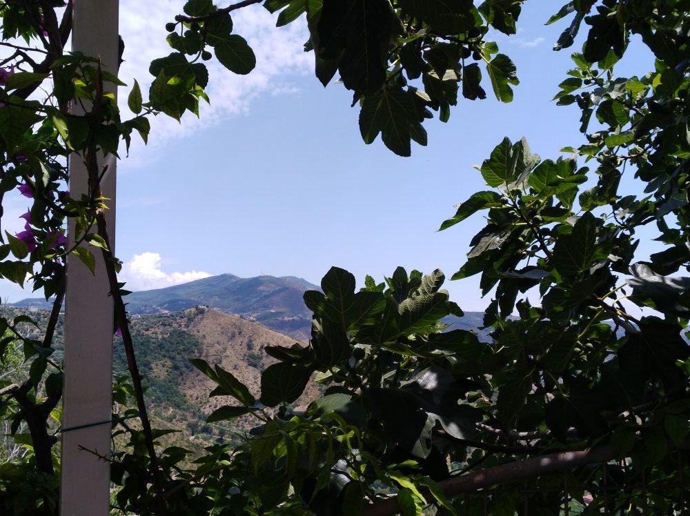 Cima del Monte Stela dal Palazzo Gentilcore