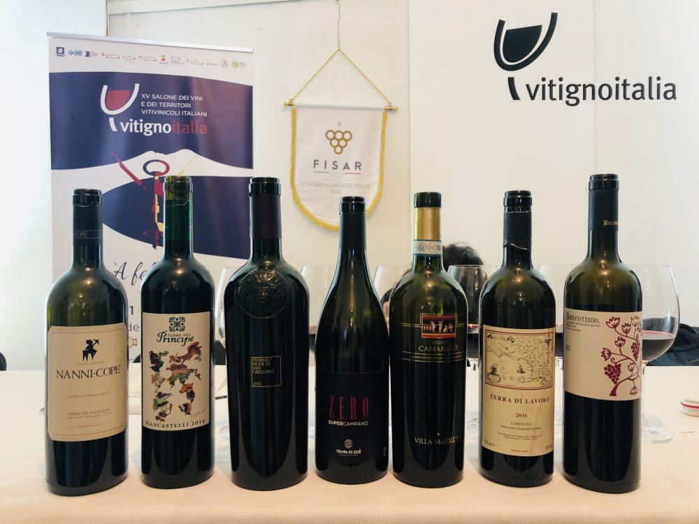 Degustazione Vitigno Italia 2019