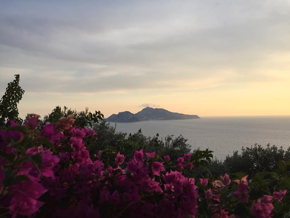 La vista su Capri dal belvedere del ristorante La Torre