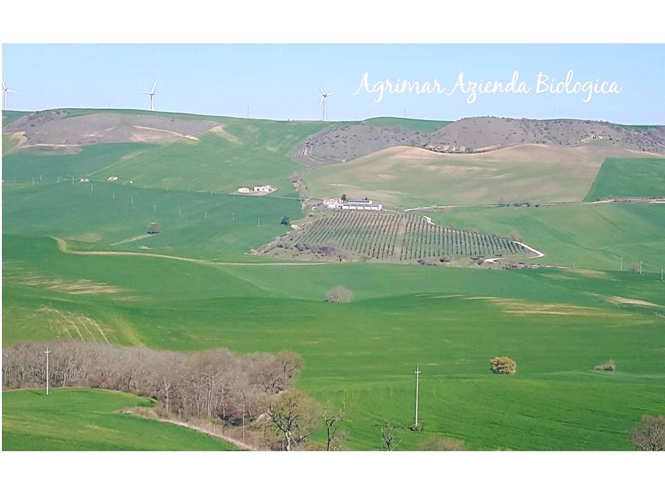 Agrimar-Azienda