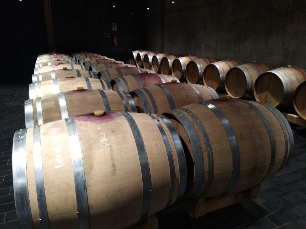 Azienda vinicola Luigi Maffini - Barricaia