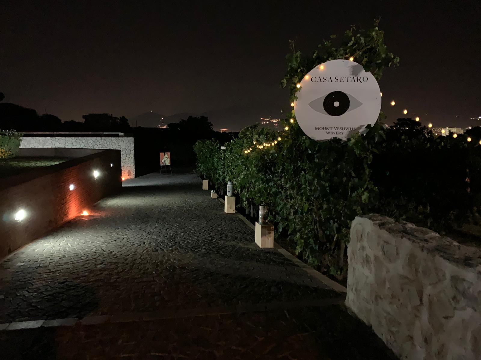 Casa Setaro - vigna di notte