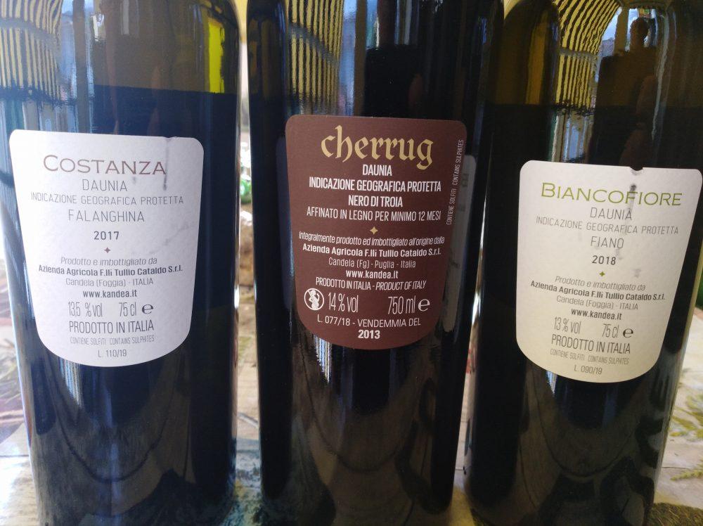 Controetichette vini di Kandea