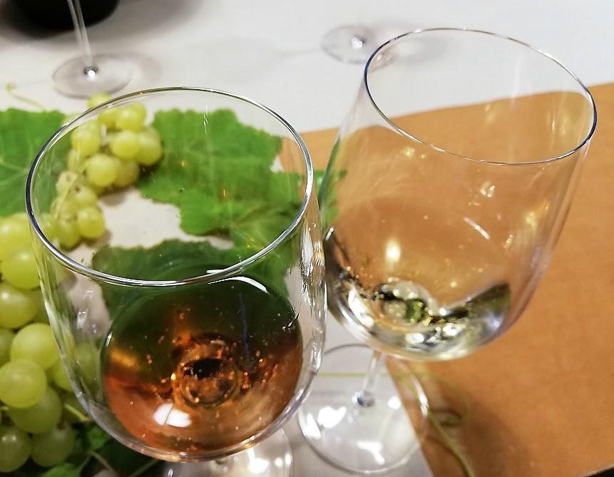 Monza Wine Experience - Nelle boutiques del centro