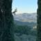 Panzano biodistretto del Chianti Classico