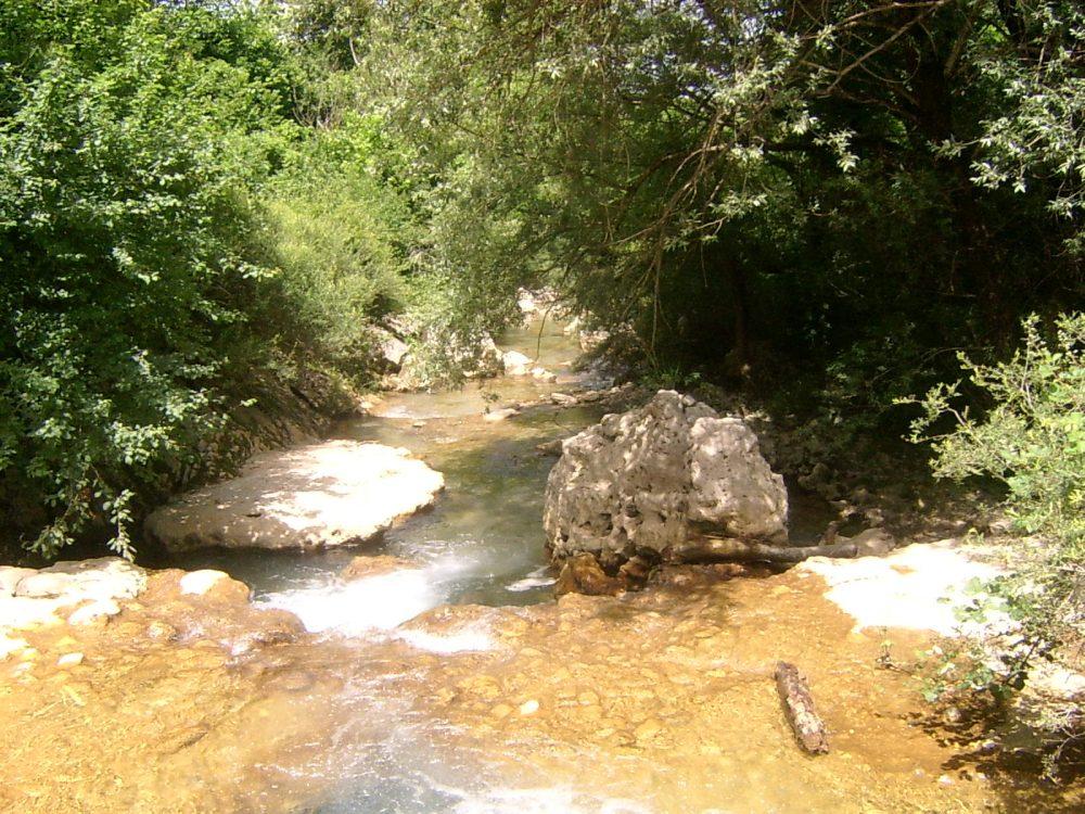Fagiolo di Casalbuono - fiume Valle d'Alessio