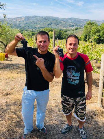 Marco e Luca Serra